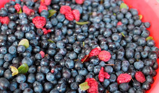 5 действительно полезных сезонных продуктов для ижевчан