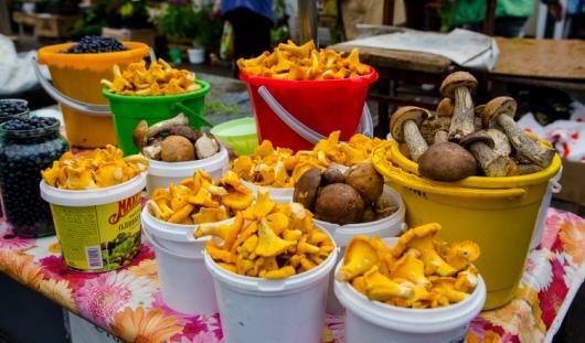 Какие грибы уже можно найти на ижевских рынках и сколько они стоят?