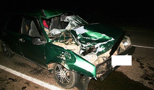 В Удмуртии водитель «девятки» сбил насмерть двоих мужчин
