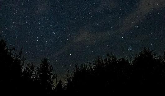 Жители Ижевска наблюдали самый сильный звездопад в этом году