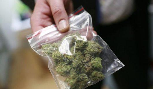 В Удмуртии депутат поехал за марихуаной, уже находясь под подпиской о невыезде