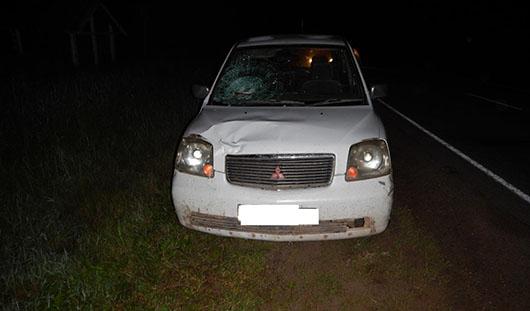 На трассе в Удмуртии под колесами авто погиб пешеход