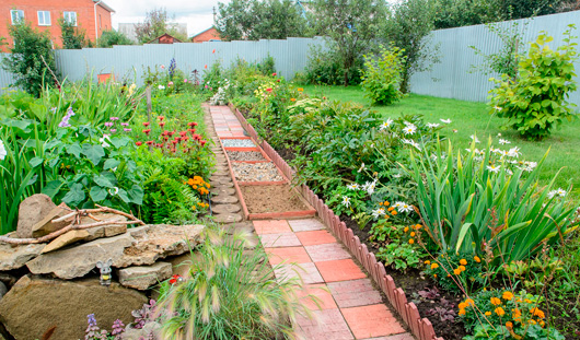 Удачи на даче: тропа здоровья и родовой клен в саду ижевчан