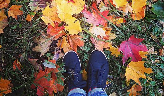 Ижевск осенний: 6 самых интересных и красивых снимков