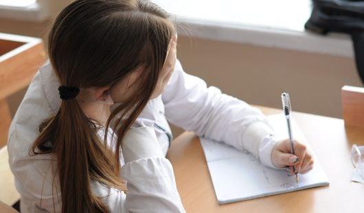 В школах Ижевска откроют «службы примирения»