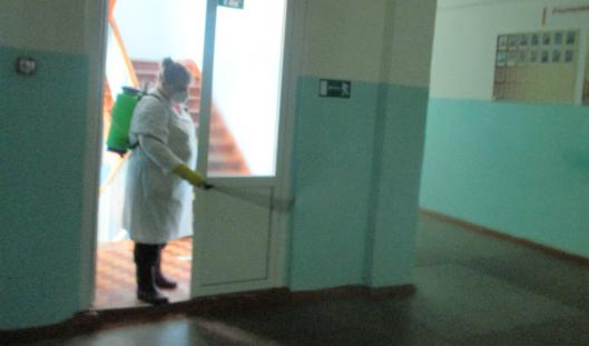 Школу №72 зачищают от энтеровирусных инфекций