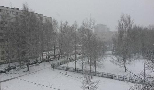 В Ижевске рано выпавший снег угрожает урожаю