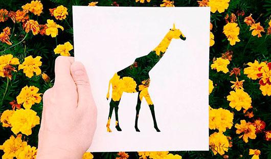 Уникальные «трафаретные» фото ижевчанина появятся на открытках