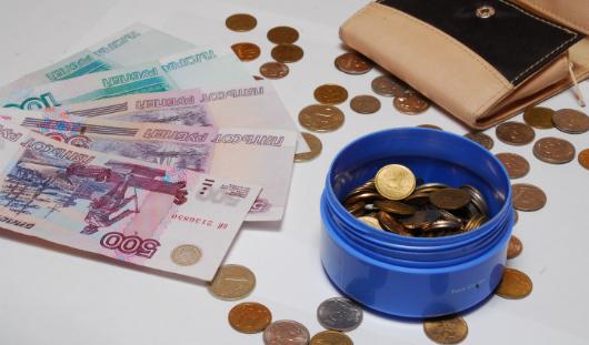 Школы Ижевска обяжут публиковать информацию о денежных сборах