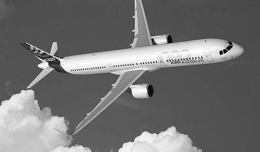 Крушение самолета в Египте и новорожденный Люцифер: чем запомнится Ижевску эта неделя