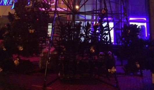 Новогодние елки начали устанавливать в Ижевске