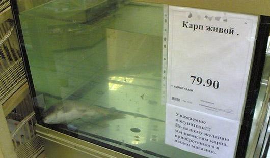 Фото дня: в Ижевском магазине продают мертвого карпа под видом живого