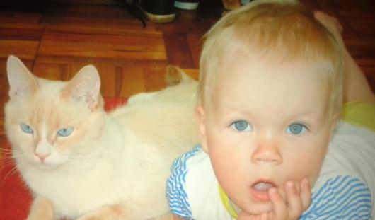 Я и мой хозяин - близнецы: ижевчане поделились своими фотографиями с домашними животными