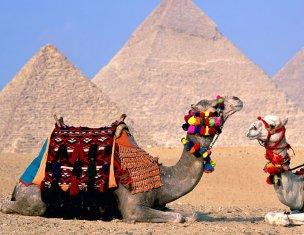 Поток туристов из России в Египет снизился