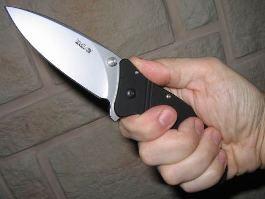 Жителя Удмуртии, напавшего с ножом на сотрудника ДПС, признали вменяемым