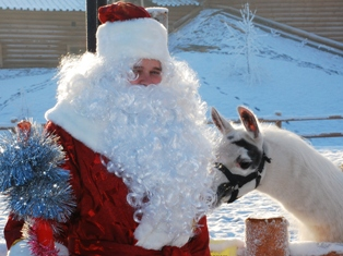 В зоопарке Ижевска Дед Мороз катает на санях