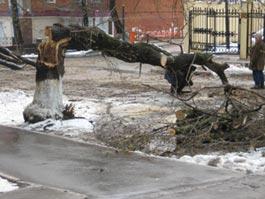 Погода в Ижевске: ожидаются высокое давление и сильный ветер