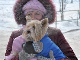 В Ижевск к выходным придут морозы до -30