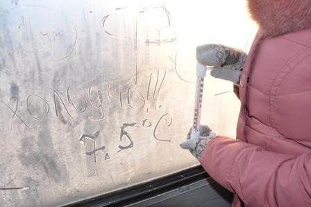 Крещенские морозы в Ижевске: в трамваях холоднее, чем в автобусах