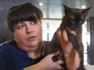 Ижевчанам показали редкую кошку по прозвищу «кирпич, завернутый в шелк»
