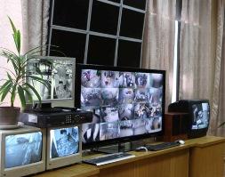 Во всех отделениях полиции Удмуртии установят камеры видеонаблюдения
