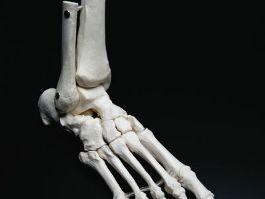 На автостоянке ж/д вокзала Ижевска обнаружили останки человеческих ног