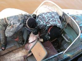 На Ижевском пруду поймали браконьеров