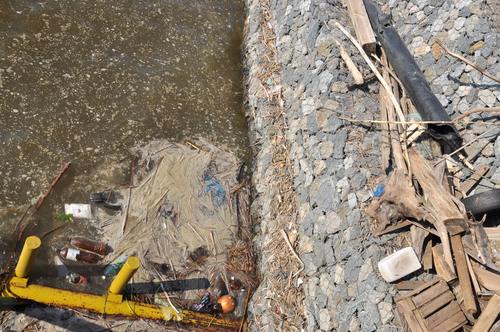 Вода в Ижевском пруду раньше времени поменяла цвет и содержание