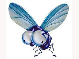 Власти Пекина запретили мухам летать в туалете