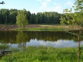 7 миллионов выделено на благоустройство пруда на Малиновой горе в Ижевске