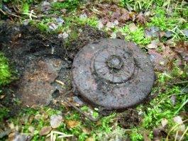 В Удмуртии нашли противотанковую мину