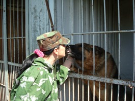В Ижевске преступников ловят 66 служебных собак
