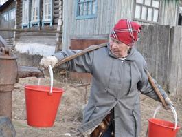 Фанаты «Бурановских бабушек» помогают им в огороде
