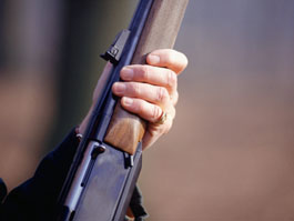Житель Удмуртии застрелил соседа из-за нескольких ульев