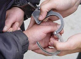 За 4 дня в Удмуртии за сбыт и хранение наркотиков было задержано 8 человек