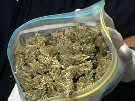Полкилограмма  марихуаны  изъяли у ижевчанина