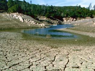 В США из-за засухи 26 штатов объявлены зоной стихийного бедствия