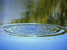 Молодой человек утонул в пруду в Селычке