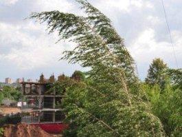 МЧС Удмуртии предупреждает об усилении ветра и грозах