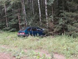 В Удмуртии легковушка врезалась в дерево