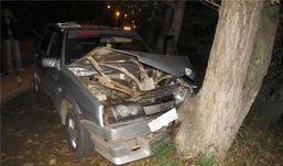 В Удмуртии  пьяная водитель «девятки» врезалась в дерево