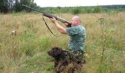 Охотникам Удмуртии разрешили добывать больше лосей и кабанов