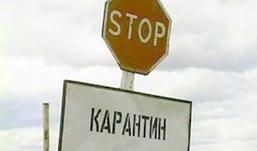 Жители Удмуртии не застрахованы от заболевания сибирской язвой