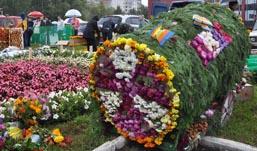 Ижевск готовится к празднику цветов