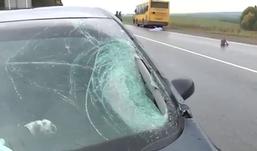 Водитель Peugeot-307 сбил насмерть пешехода в Удмуртии