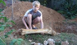 В огороде в Удмуртии нашли кость мамонта