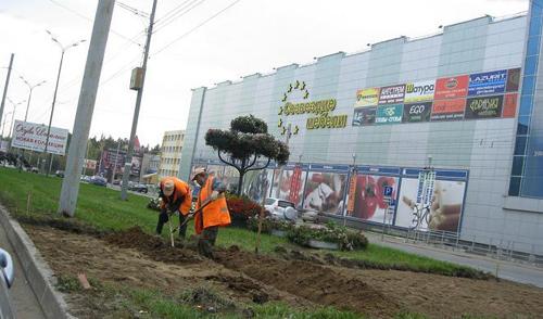 В Ижевске у «Эльгрина» начали переносить остановку и пешеходный переход