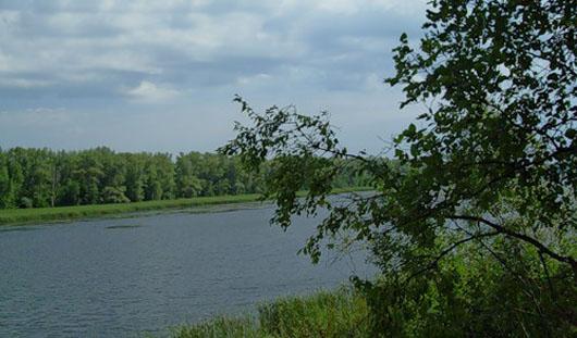 Местные жители захватили земли в районе Соловьевских дач и Воложки в Удмуртии