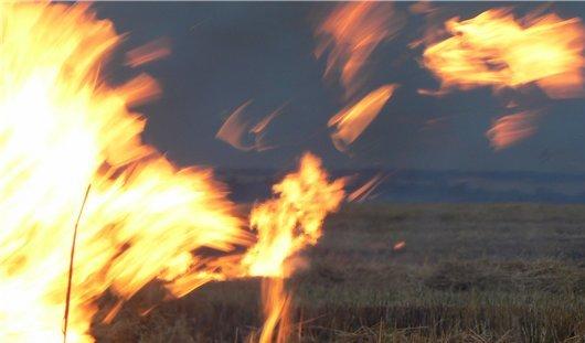 8 тонн зерна сгорело в Удмуртии