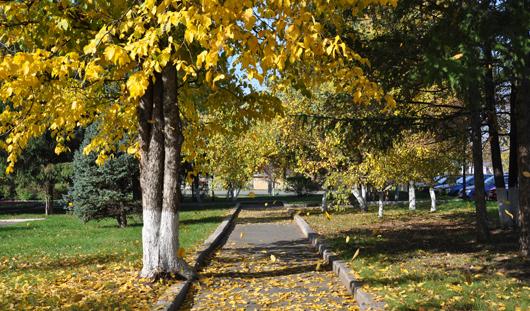 Всю неделю в Ижевске будет стоять чудесная погода